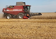 FIRST COMMERCIAL HARVESTERS PALESSE GS14 AND PALESSE GS16 TAKE THE CROP