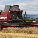 """GOMSELMASH"" AND BRITISH PERKINS WORKING ON INNOVATIVE HARVESTER"